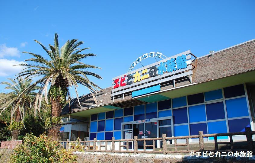 すさみ海立エビとカニの水族館