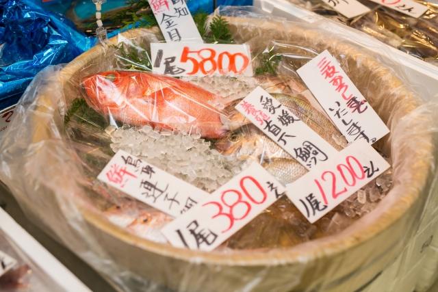 離乳食初期に食べられる魚介類