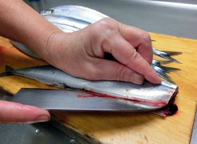 魚の臭いの原因物質であるトリメチルアミンって何?