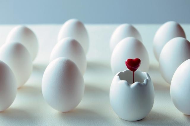 乾燥肌に有効な卵