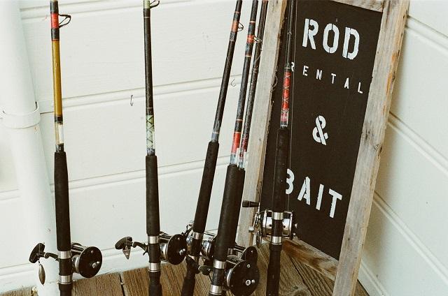 イワシ釣りに適した竿
