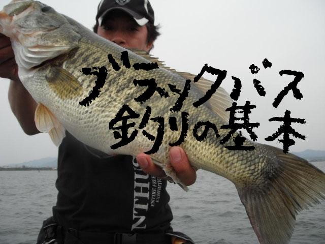 ブラックバス釣りの基本-初心者でも釣れるワームの仕掛け