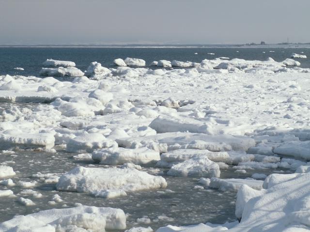 北海道・東北地方のダイビングスポット