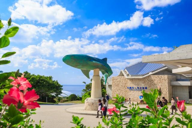 子供と行くオススメ水族館 沖縄美ら海水族館