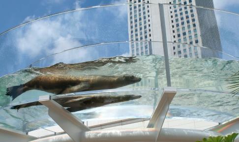 デートにおすすめ!人気の水族館 サンシャイン水族館