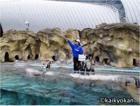 デートにおすすめ!人気の水族館 海響館