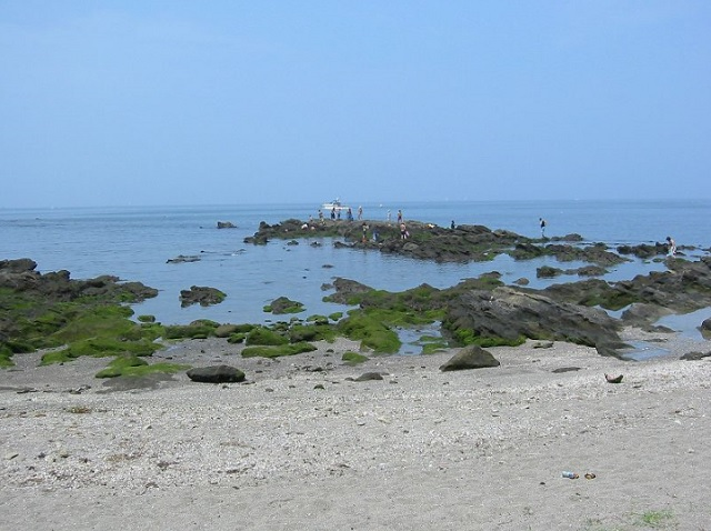 和田海水浴場 おすすめシュノーケリングスポット