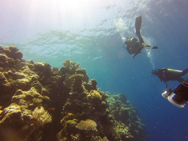 海外おすすめダイビングスポット!ダイバーが選んだ名所 サイパン