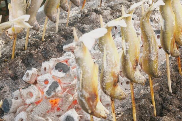 絶品の鮎料理!鮎を美味しく食べるには?